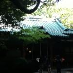氷川神社 赤阪 本殿