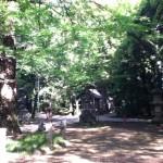 氷川神社 赤阪 境内