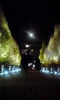 ホテル・神社ツアー