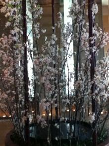 リッツの桜 東京横浜ホテル朝食会&早朝参拝の会