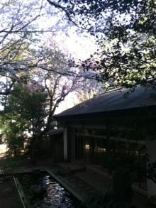 茶室 日本神話とタロット / 魂の声を聴く優雅な時間